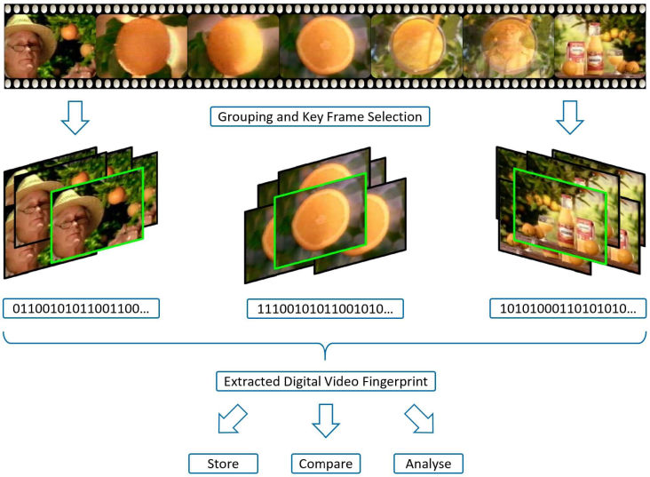 Extraction of Digital Video Fingerprints